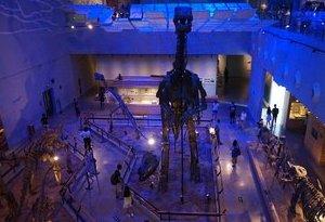 廣州博物館裏過暑假 17門館校課程免費學