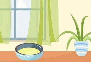 在屋裏放一碗糖水真的能驅蚊嗎?