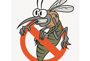 防蚊大作戰 如何能取勝?