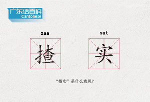 """廣東話百科:揸實(""""揸實""""是什麼意思?)"""