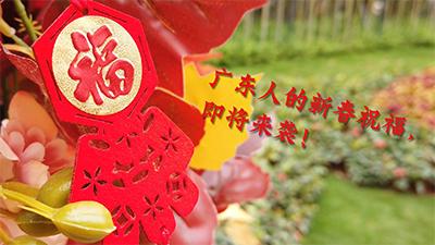 廣東人的新春祝福 即將來襲