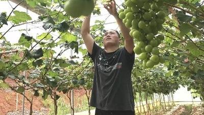 27個貧困村全部脫貧摘帽 深圳市屬國資國企定點幫扶顯擔當