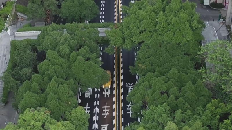 """車輛偏離車道將被震蕩提醒 廣州這段路""""換新裝"""""""