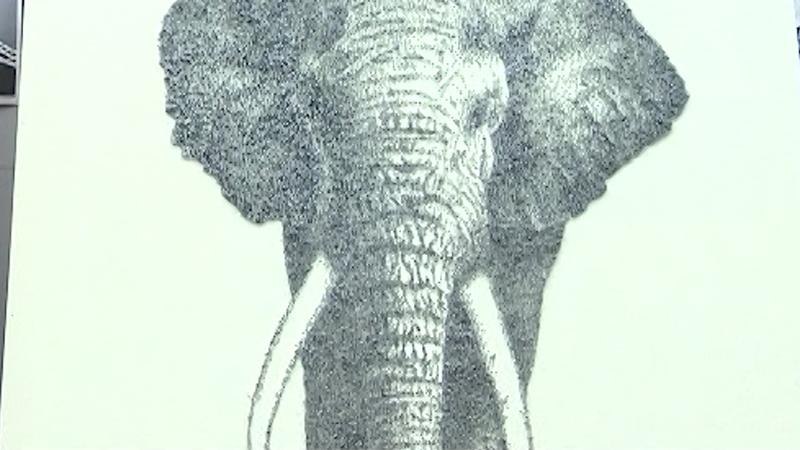 驚艷!美術老師用數萬顆釘子畫出大象