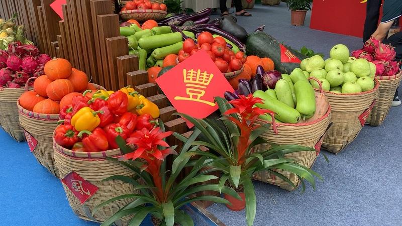 慶豐收 迎小康 粵港澳大灣區電商節在廣州開幕