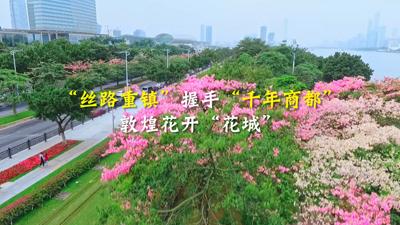 """""""絲路重鎮""""握手""""千年商都""""敦煌花開""""花城"""""""