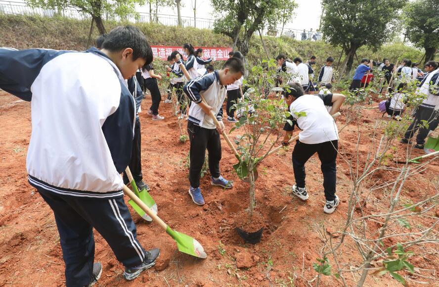 佛山:學子與遊客齊參與植下萬株苗 帶來新希望