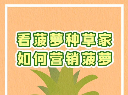 為什麼選擇廣東菠蘿?菠蘿種草家給你一萬個理由!